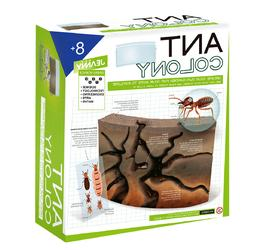 Ant Colony Terrarium Kit Arts and Crafts for Kids Ages 8-12